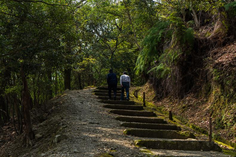 【全て無料】龍野公園周辺散歩が最高の運動不足解消法