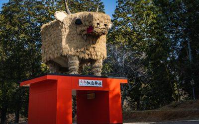 【最高の初詣】姫路市安富町加茂神社を完全ガイド!