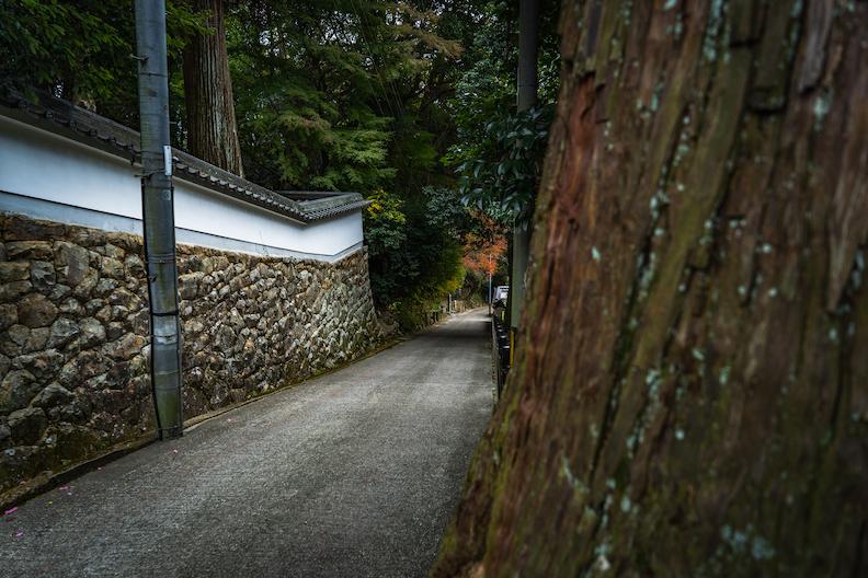 【加東市】五峰山光明寺の鬼坂散歩がまるで京都!