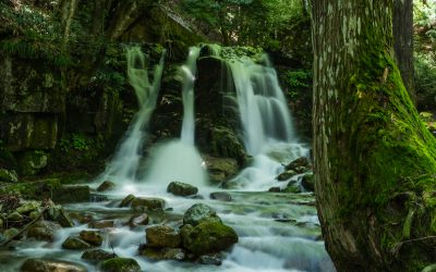 【宍粟市の穴場】三室の滝の2mの跳ね返りに驚愕!