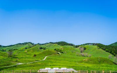 【播州のスイス】新緑の砥峰高原がすすきよりもおすすめなワケ!