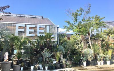 【播州最大】姫路・FEEL THE GREEN さんは巨大植物園!?