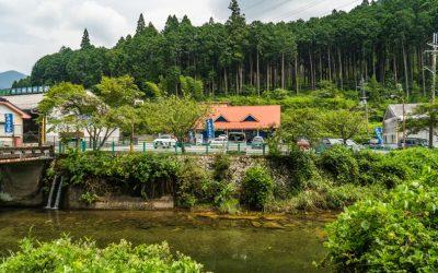 【衝撃の瑞々しさ】神河町・名水わらび餅と川遊び