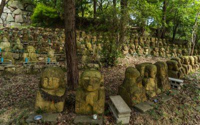 【穴場無料キャンプ場】加西市・古法華自然公園の今